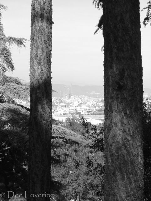 Barcelona, through the trees